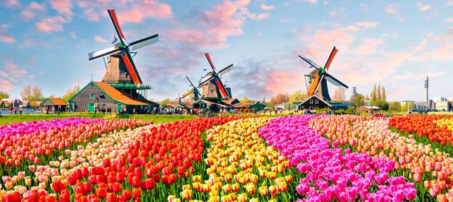 keukenhof-garden-of-europe